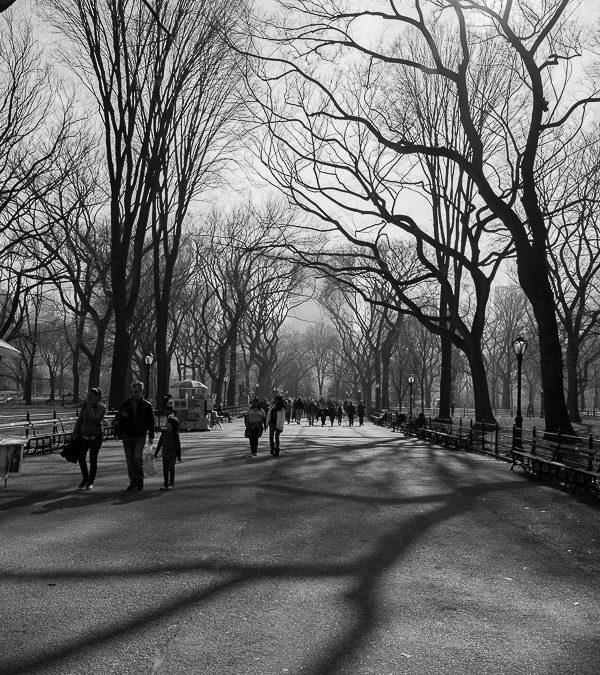 Carnaval em NY, Central Park, inverno sombrio e tão belo.